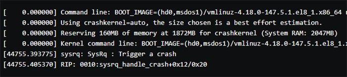 Abbildung 5: In der Datei finden Sie Informationen zum von Ihnen absichtlich ausgelösten Crash wieder.