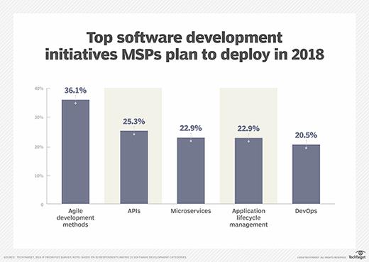 Chart showing top software development initiatives