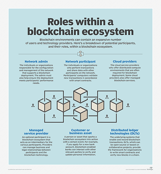 Roles within a blockchain ecosystem