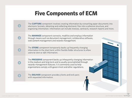 The ECM components are listed