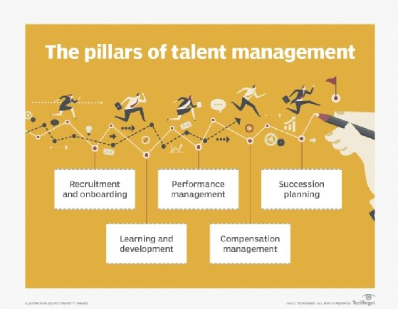 The pillars of talent management
