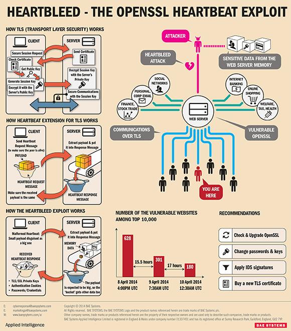 OpenSSL Heartbleed exploit infographic