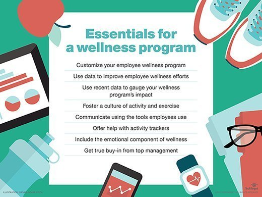Essentials for a wellness program