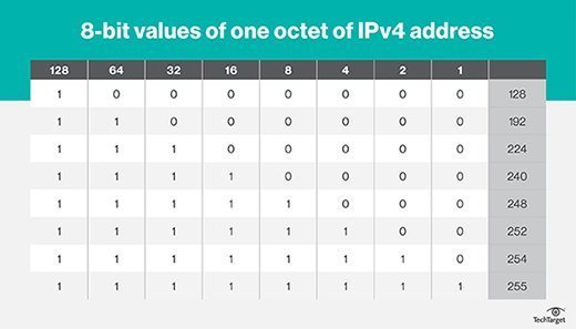 8-bit values of one octet of an IPv4 IP address.