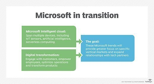 Microsoft in transition