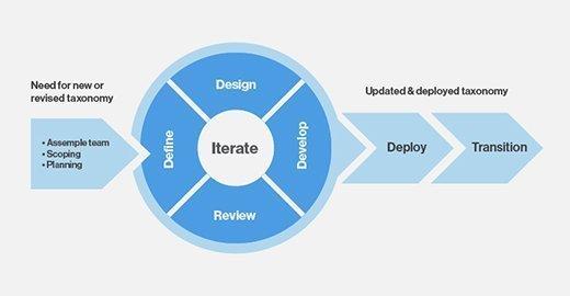Iterative taxonomy development