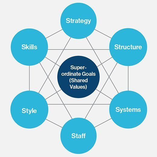 Evaluation of organisation styles for gap inc