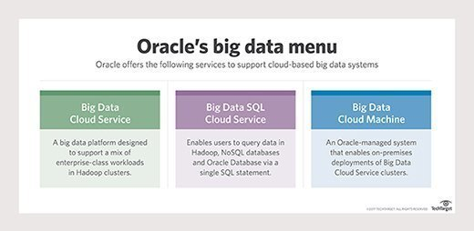 Oracle's big data cloud services
