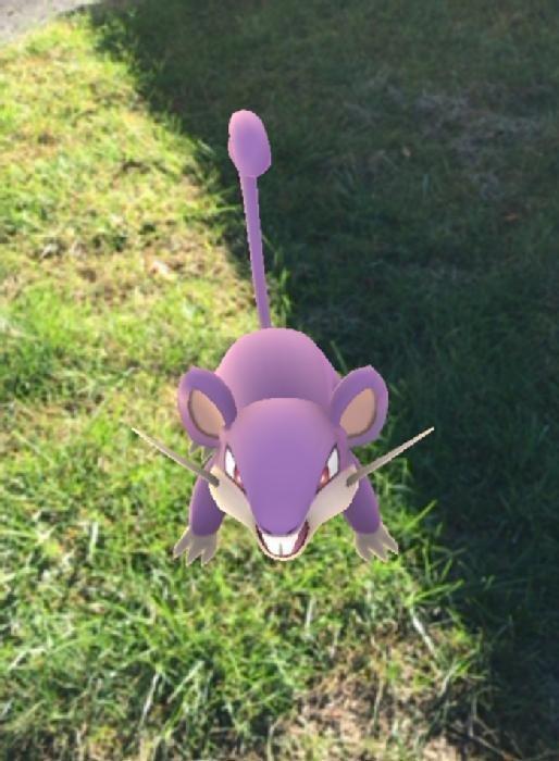 Pokémon Go character
