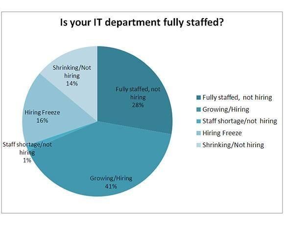 IT staff department