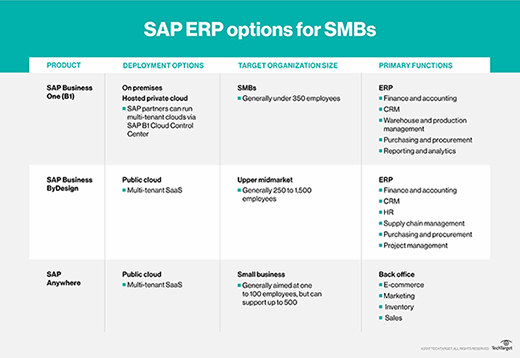 SAP SMB ERP options
