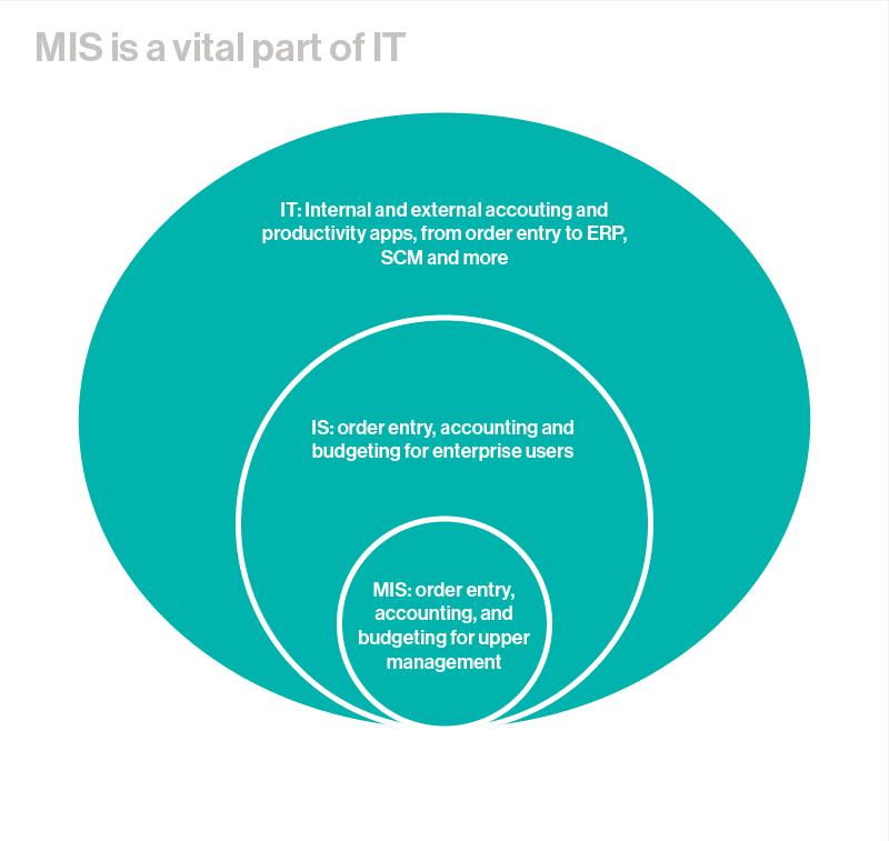 What is MIS (management information systems)? - Definition from