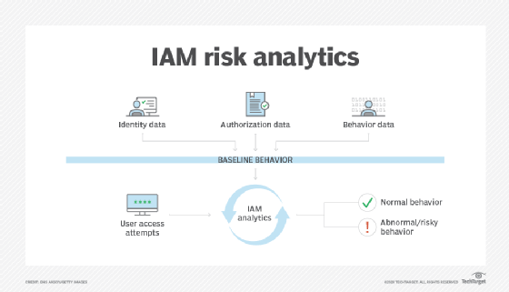 How IAM provides risk information