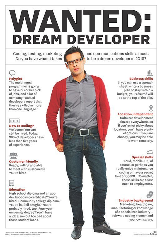 Dream software developer skills