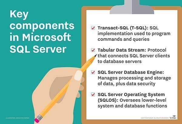 Key components in Microsoft SQL Server