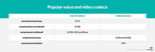 Popular voice and video codecs
