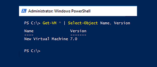 VM name and configuration version