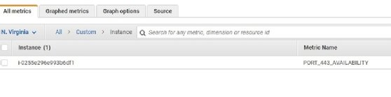 CloudWatch custom metric available