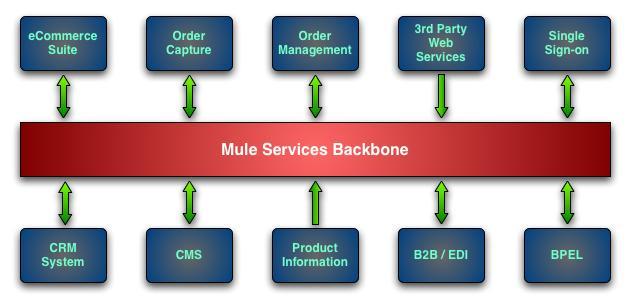 Mule: A Case Study