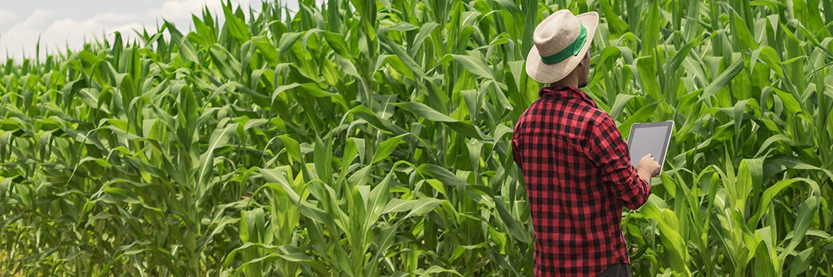 What are the benefits of smart farming systems?
