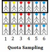 échantillonnage par quotas