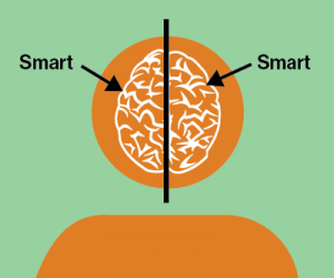 Both sides of the brain are smart